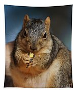 Squirrel Eating Corn Tapestry