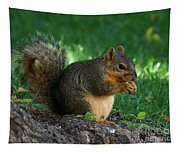 Squirrel Eating Tapestry