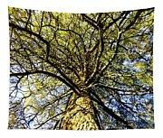 Stalwart Pine Tree Tapestry