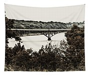 Strawberry Mansion Bridge From Laurel Hill Tapestry