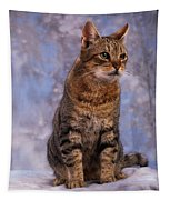 Tabby Cat Portrait Of A Cat Tapestry