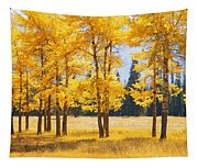 Trees In Autumn Tapestry