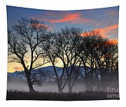Trees With Fog Tapestry