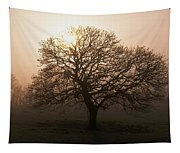 Winter Tree On A Frosty Morning, County Tapestry