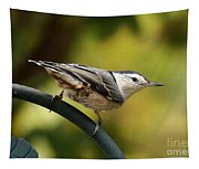 Nuthatch Tapestry