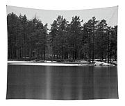 Haukkajarvi First Snow Tapestry