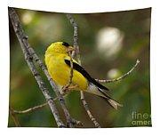 Finch Tapestry