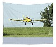 Plane Tapestry