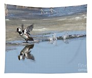 Hooded Merganser Tapestry