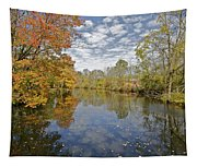 Autumn Colors On The Delaware And Raritan Canal Tapestry