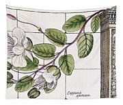 Colosseum: Flower Tapestry