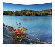 Killarney Provincial Park In Fall Tapestry