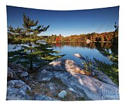 Lake George At Killarney Provincial Park In Fall Tapestry