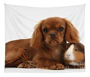 Ruby Cavalier King Charles Spaniel Pup Tapestry