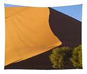 Sand Dune, Namibia, Africa Tapestry