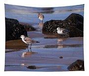 Sanderling Tapestry
