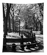 Scenes From Central Park Tapestry