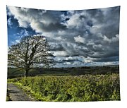 Sycamore Tree Tapestry