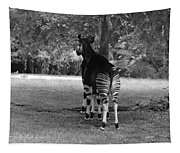 Two Stripes In Black And White Tapestry