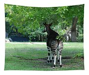 Two Stripes Tapestry