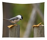 Willow Tit Tapestry