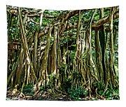 20120915-dsc09882 Tapestry