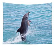 Atlantic Bottlenose Dolphin Tapestry