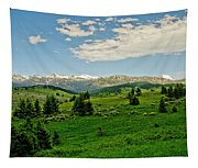 Bridger Mountain View Tapestry