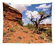 Canyonlands Needles District Tapestry