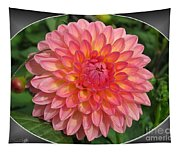 Dahlia Named Hillcrest Suffusion Tapestry