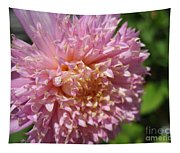 Dahlia Named Siemen Doorenbosch Tapestry