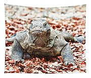 Komodo Dragon Tapestry