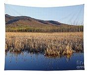 Pondicherry Wildlife Refuge - Jefferson New Hampshire Tapestry