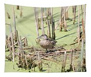 Teal Duck Tapestry