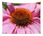 Echinacea Purpurea Or Purple Coneflower Tapestry