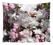 Lilac Named Beauty Of Moscow Tapestry