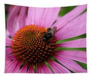 Eastern Purple Coneflower Tapestry