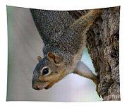Hanging Around Tapestry
