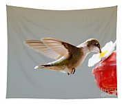 Hummingbird Tapestry