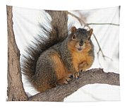 Squirrel Tapestry