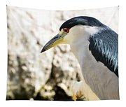A Black-crowned Night Heron  Tapestry