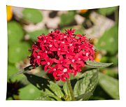 A Bunch Of Small Red Flowers Tapestry