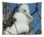A Frigatebird Sitting In A Nest Tapestry