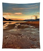 A Frozen Shore Tapestry