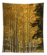 A Golden Trail Tapestry