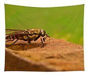 A Horse Fly Posing 1 Tapestry
