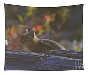 A Little Chipmunk  Tapestry