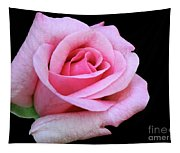 A Pink Rose Tapestry