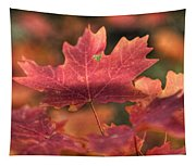 A Red Fall  Tapestry
