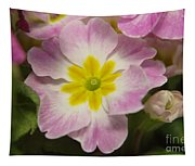 A Shy Flower  Tapestry